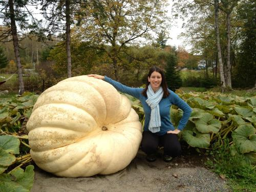 2013 Giant Pumpkin