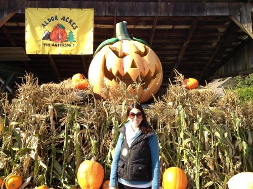 2013 Giant Pumpkin